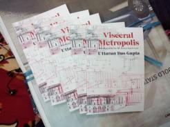 Visceral Metropolis (2)